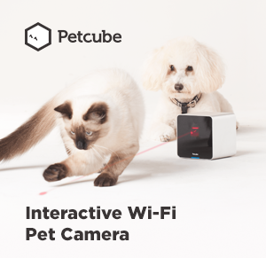 Petcube, Inc.